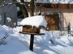 Skiurlaub in Thüringen, Schnee und Freude