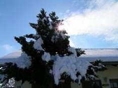 Thüringen Winter Winterurlaub in Thüringen.