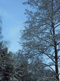 Winterurlaub in Schmalkalden, Thüringen